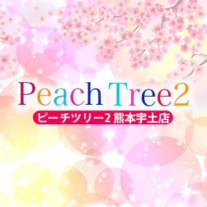 Peach Tree 2 熊本宇土店 クーポン 142