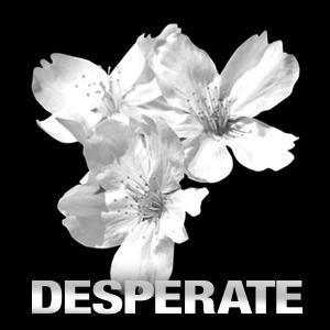 DESPERATE(昼)ホットニュース5043