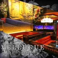 Club Vellugueホットニュース8220