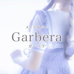 Garberaホットニュース1995