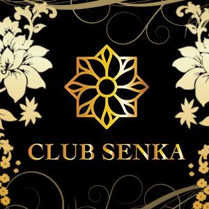 SENKA クーポン 791