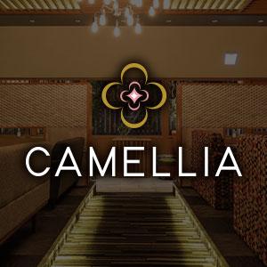 CAMELLIAホットニュース12776