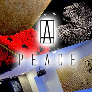 PEACEホットニュース12599