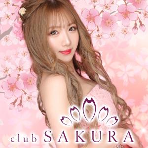 SAKURAホットニュース11312