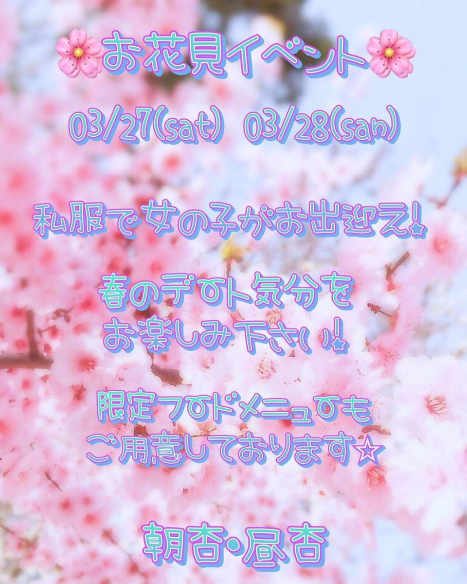 An 杏(朝)ホットニュース7520